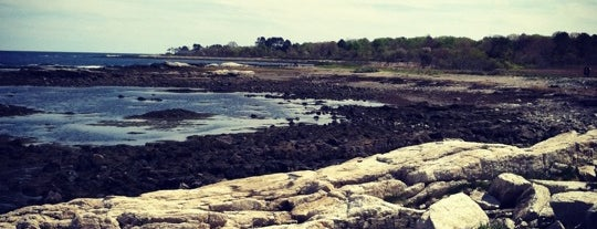 Odiorne Point State Park is one of 82 Best Birdwatching Spots in the US.