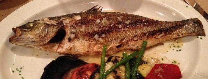 Fresco Steak and Seafood Grill is one of Posti che sono piaciuti a Mike.
