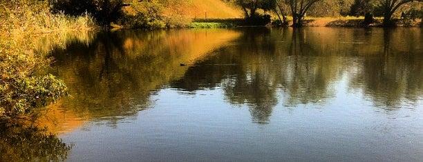 Garin/Dry Creek Pioneer Regional Parks is one of Sun Pr0n Manor Adventures.