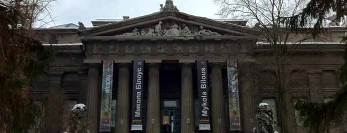 Національний художній музей України / National Art Museum of Ukraine is one of Museums.