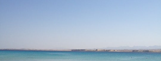 Red Sea Beach is one of Frankさんのお気に入りスポット.
