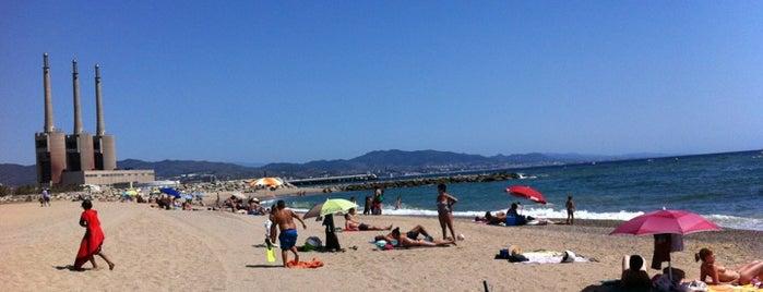 Platja del Fòrum is one of Los mejores sitios para hacer deporte en Barcelona.