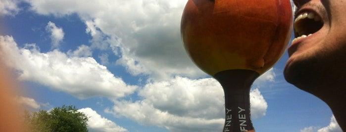 Peachoid, The Gaffney Peach is one of Charlotte, North Carolina.
