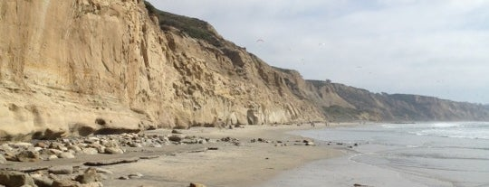 Torrey Pines State Beach is one of Favorite Haunts Insane Diego.