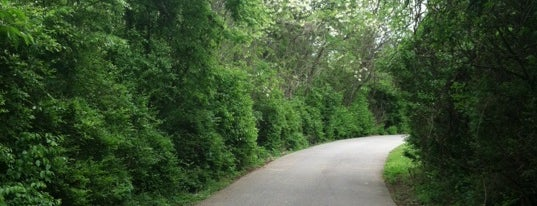 Stones River Greenway (Wave Country Entrance) is one of Alisonさんのお気に入りスポット.