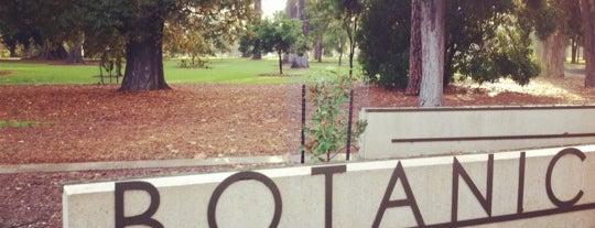 Adelaide Botanic Garden is one of To do in Adelaide.