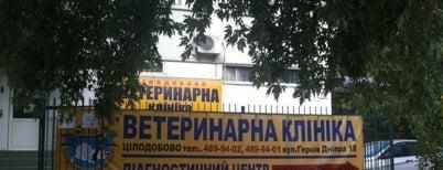 """Ветеринарная клиника """"Алден-вет"""" is one of Tempat yang Disukai Инна."""