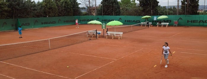 Salonica Tennis Club is one of Lily's beloved places.