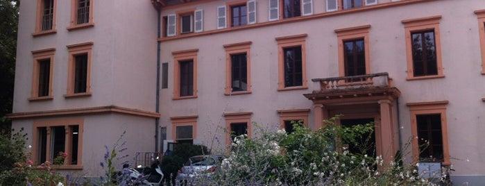 Restaurant de Bois Genoud - Le Castel is one of Davidさんの保存済みスポット.