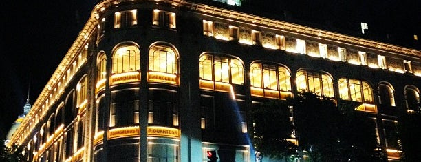 Palacio de Hierro is one of Lugares para comprar.
