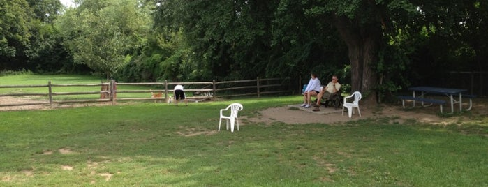 Stamford Dog Park is one of Stamford.