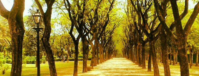 Parque Amate is one of Punto verde.