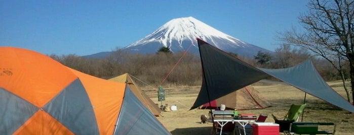 朝霧ジャンボリーオートキャンプ場 is one of Favorite Campground.
