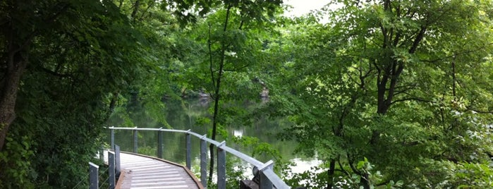Sentier de la Gorge de la rivière Magog is one of #SherbyLove.