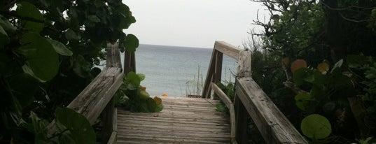 Phipps Beach is one of สถานที่ที่ Charles ถูกใจ.