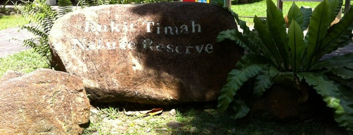 Bukit Timah Nature Reserve is one of le 4sq with Donald :].