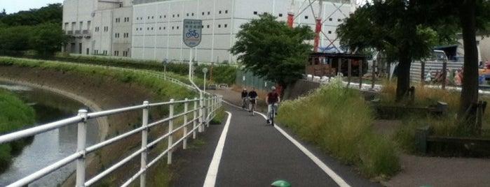 藤沢大和自転車道 is one of サイクリング大好き♥.