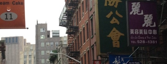 Chinatown is one of บันทึกเดินทาง New York.