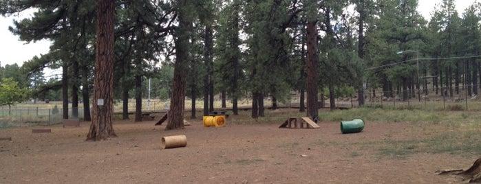 Thorpe Dog Park is one of Lugares favoritos de Grant.