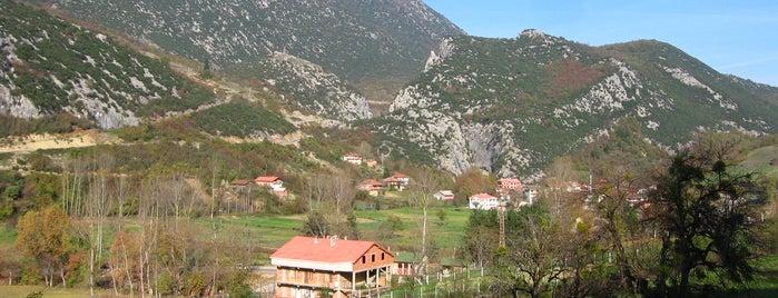 Ulukaya Köyü is one of Yönetimimdekiler.