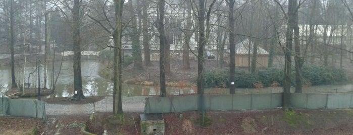Kasteel de Berckt is one of Posti che sono piaciuti a Ruud.