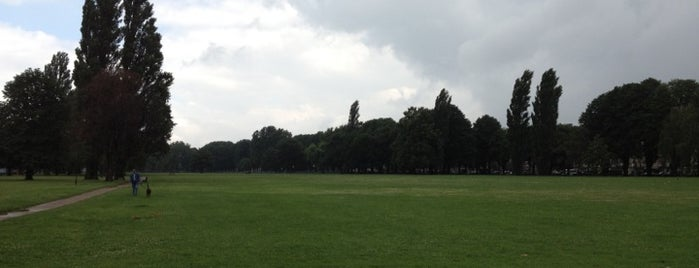 Rheinpark is one of StorefrontSticker #4sqCities: Düsseldorf.