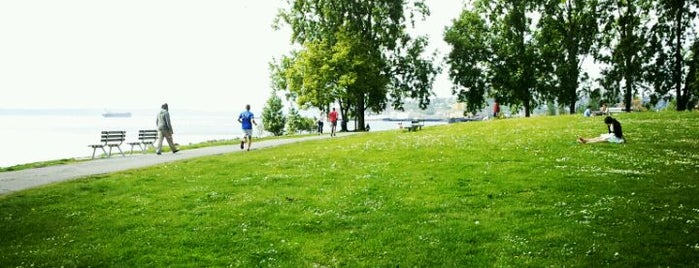 Myrtle Edwards Park is one of Seattle's 400+ Parks [Part 1].
