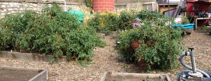 Switzer Farm & Westside Community Garden is one of #UrbanGrown Farms & Gardens Tour.
