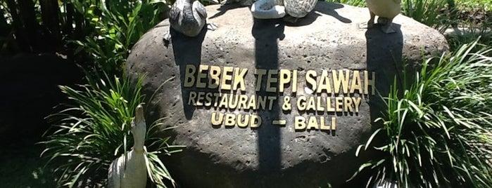 Bebek Tepi Sawah Restaurant & Villas is one of Bali - Cafes & Restaurants.