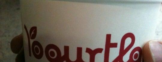 Yogurtland is one of Top Restaurants.