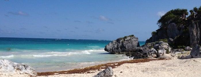 Riu Playacar is one of Tempat yang Disukai Miriam.