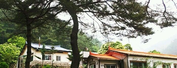 New Start is one of Orte, die Sung Han gefallen.