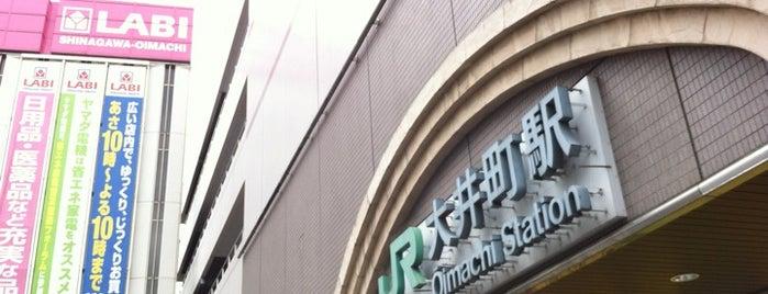 Ōimachi Station is one of JR 미나미간토지방역 (JR 南関東地方の駅).