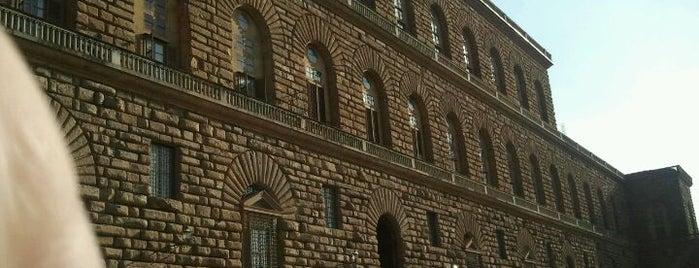 Palazzo Pitti is one of 101 posti da vedere a Firenze prima di morire.