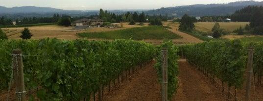 Ayres Vineyard is one of Oregon.