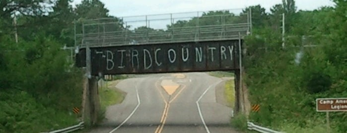 T-Bird Bridge is one of north carolina must sees.