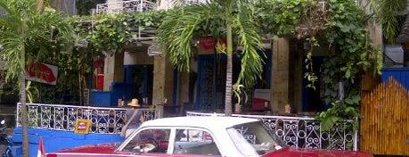 cafe havana is one of Best Trip Advice Bali.