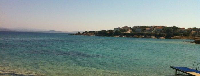 Lodos Plajı is one of İzmir.
