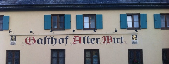 Alter Wirt is one of Ausflüge.