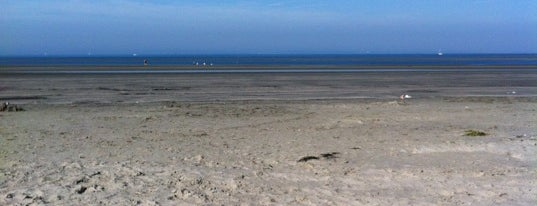 West Wittering Beach is one of The UK's Best Sandy Beaches.