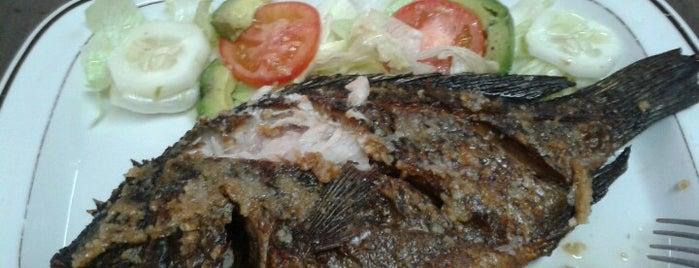 Restaurante Papaloapan is one of Restaurantes por visitar..