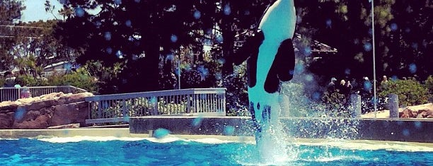 SeaWorld San Diego is one of California Favorites.