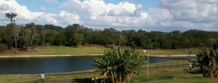 Jardim Botânico de Londrina is one of Lugares favoritos de Káren.