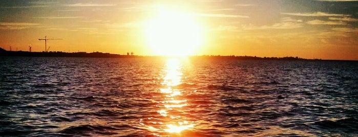 Folsom Lake is one of Matt : понравившиеся места.