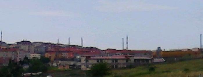 Kartal H Tipi Ceza İnfaz Kurumu is one of Pendik.