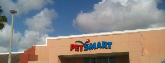 PetSmart is one of Manuel 님이 좋아한 장소.
