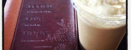 Best Coffeeshops
