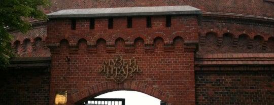 Музей янтаря is one of Денис : понравившиеся места.