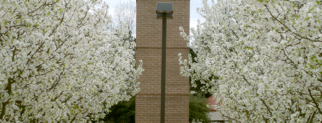 Hinds Community College Rankin is one of Laurenさんの保存済みスポット.