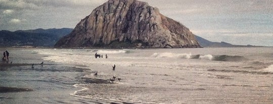 Morro Strand State Beach is one of SLO County Top Spots.